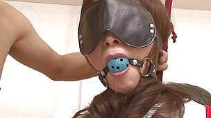 Tied with rope, ball gagged and blindfolded Miyama experiences a rough threesome. These chaps like playing with her pussy as a result one of them holds her tight while the other is fucking her hairy cunt with a dildo, penetrating her pussy and rubbing her