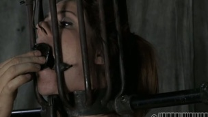 Beauty acquires her nipples licked in advance of painful clamping